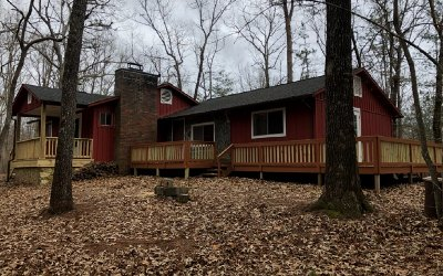 Fannin County Single Family Home For Sale: 355 Lake Cove Circle