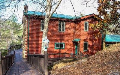 Ellijay Single Family Home For Sale: 462 Lyric Lane
