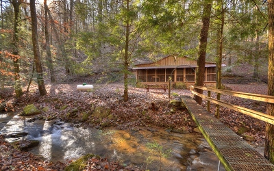 Ellijay Single Family Home For Sale: 454 Turkey Creek Drive