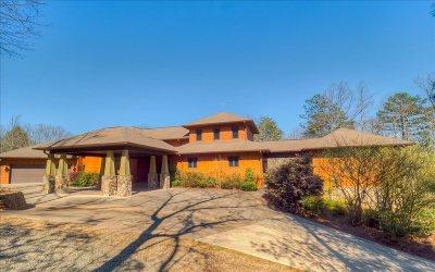 Blue Ridge Single Family Home For Sale: 256 Cedar Valley Rd