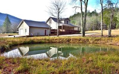 Fannin County Single Family Home For Sale: 1956 Devils Den Rd