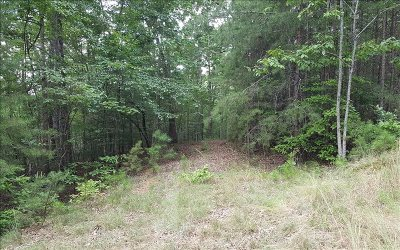 Residential Lots & Land For Sale: Lt359 Thunder Trail