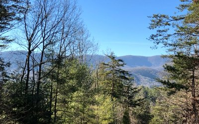Residential Lots & Land For Sale: # 6 Big Sky