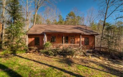 Ellijay Single Family Home For Sale: 610 Eagle Mountain Dr