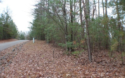 Residential Lots & Land For Sale: L 127 Mountain Crk Hollow