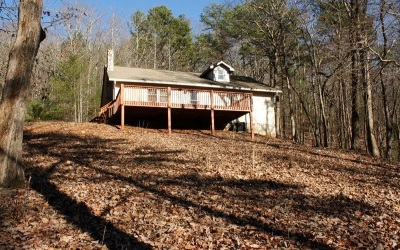 Ellijay Single Family Home For Sale: 388 Pinson Lane