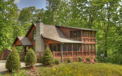 Blue Ridge Single Family Home For Sale: 411 Pony Ghost Trails