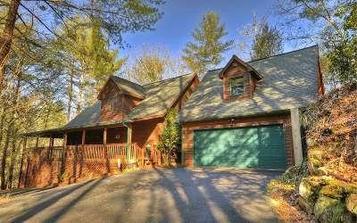 Ellijay Single Family Home For Sale: 1456 Lazy River Lane