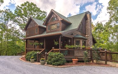 Ellijay Single Family Home For Sale: 284 Vista Chalet Drive
