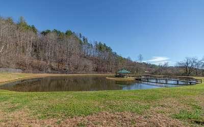Ellijay Single Family Home For Sale: 3380 Tails Creek Church
