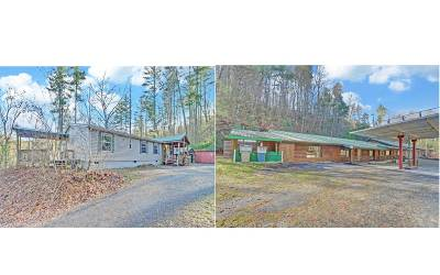 Suches Single Family Home For Sale: 24444 Morganton Hwy