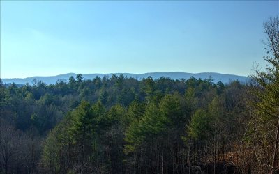 Ellijay Residential Lots & Land For Sale: 30.67 Craigtown Rd
