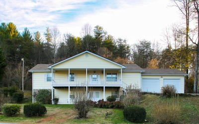 Hiawassee Single Family Home For Sale: 1783 Sunnyside Rd