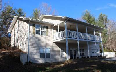Hayesville Single Family Home For Sale: 173 Tusquittee Laurel