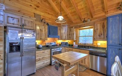 Ellijay Single Family Home For Sale: 165 Hunter Ridge