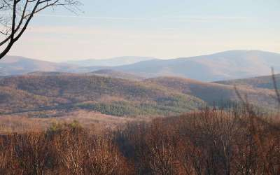 Ellijay Residential Lots & Land For Sale: 281 Andes Ridge Lot 281