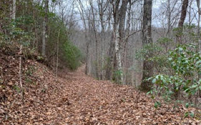 Hiawassee Residential Lots & Land For Sale: A-8 White Oak Forest