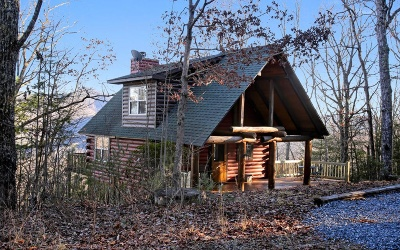 Blairsville Single Family Home For Sale: 551 Wild Turkey Rd