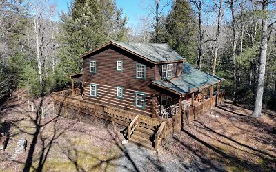 Suches Single Family Home For Sale: 81 Poplar Dr