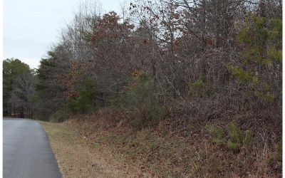 Jasper Residential Lots & Land For Sale: Big Ridge Road