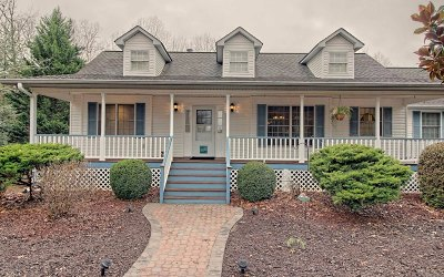 Blairsville Single Family Home For Sale: 205 Eagle Dr