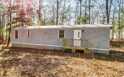 Ellijay Single Family Home For Sale: 1505 Morton Drive