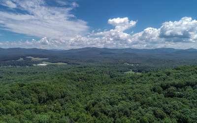 Ellijay Residential Lots & Land For Sale: Mollie Mountain Trl