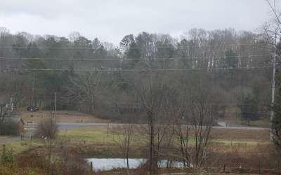 Ellijay Residential Lots & Land For Sale: 1514 Gunstock Creek Rd