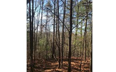 Residential Lots & Land For Sale: 12027 Tails Creek Rd