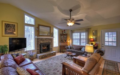 Ellijay Single Family Home For Sale: 55 Cannon Ct