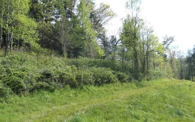 Brasstown Residential Lots & Land For Sale: C1 Bidstrup Acres
