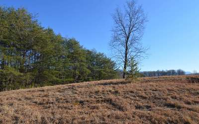 Young Harris Residential Lots & Land For Sale: Lt 79 The Preserve