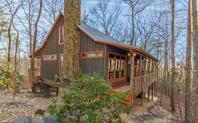 Ellijay Single Family Home For Sale: 1030 Lost Forest Rd