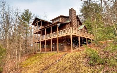 Cherry Log Single Family Home For Sale: 376 Bushyhead Road
