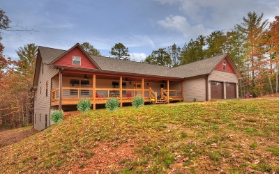 Mineral Bluff Single Family Home For Sale: 76 Bobby Franklin Drive