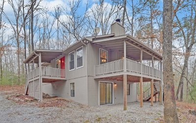 Blairsville Single Family Home For Sale: 787 Gibbs Road