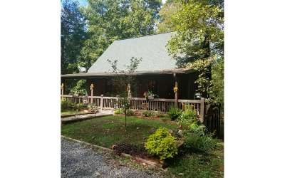 Fannin County Single Family Home For Sale: 55 Crestview Drive