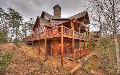 Blue Ridge Single Family Home For Sale: 283 Black Gum Lane