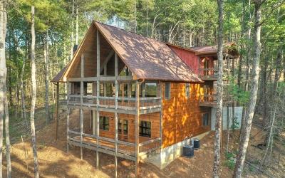 Blue Ridge Single Family Home For Sale: Lt 5 Oasis