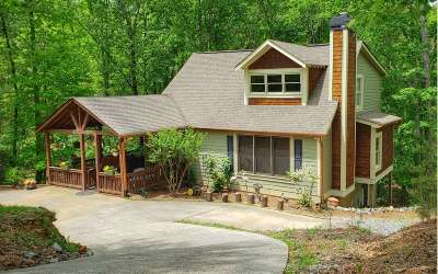 Ellijay Single Family Home For Sale: 235 Palisade Dr