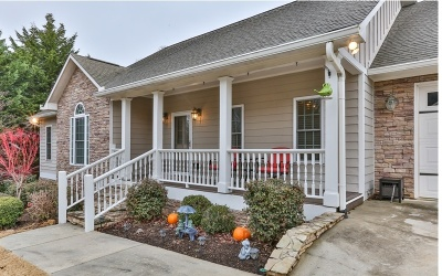 Ellijay Single Family Home For Sale: 110 Oakland Court