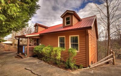Ellijay Single Family Home For Sale: 164 Zane Drive