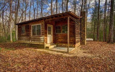 Fannin County Single Family Home For Sale: 467 Forge Mill Rd
