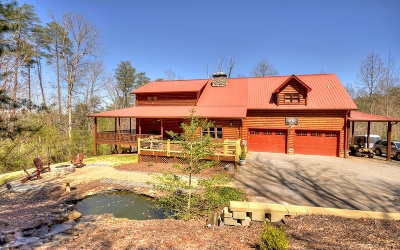 Blue Ridge Single Family Home For Sale: 42 Overlook Road