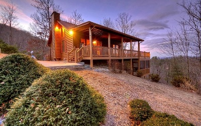 Blue Ridge Single Family Home For Sale: 438 Necowa Cove Overlook