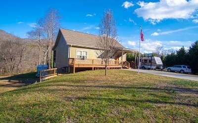 Hiawassee Single Family Home For Sale: 576 Bearmeat Road