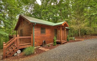 Blue Ridge Single Family Home For Sale: 207 Sunrise Lane