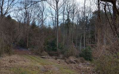 Murphy Residential Lots & Land For Sale: 00b McGwire St./Brittain