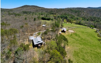 Single Family Home For Sale: 431 Toccoa Farm Road