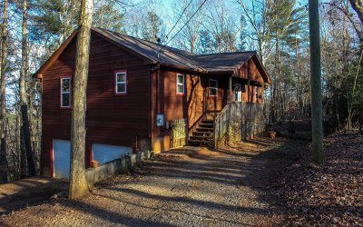 Ellijay Single Family Home For Sale: 810 Riverview Drive